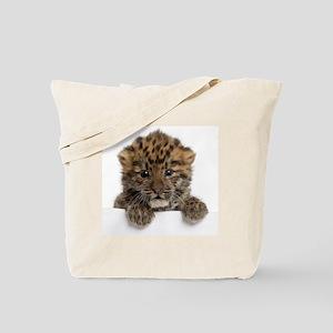 Amur leopard cub Tote Bag