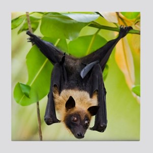 Fruit Bat Hanging In A Tree Tile Coaster