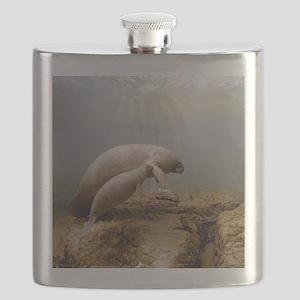 Manatee Family Flask