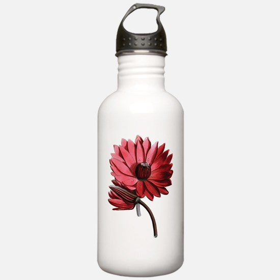 Red Water Lilies Water Bottle