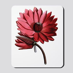 Red Water Lilies Mousepad