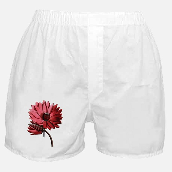 Red Water Lilies Boxer Shorts