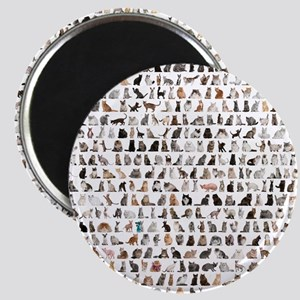 Large group of 471 cats breeds in front of  Magnet
