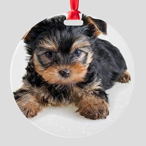 Yorkshire Terrier Puppy Round Ornament