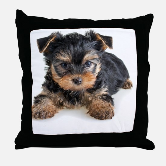 Yorkshire Terrier Puppy Throw Pillow