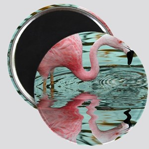 Pink Flamingo Reflection Magnet