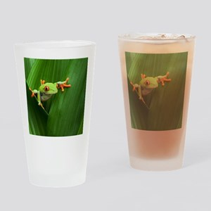 Red eyed tree frog Drinking Glass