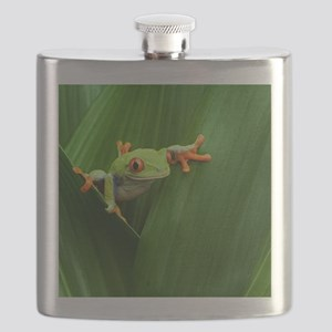 Red eyed tree frog Flask
