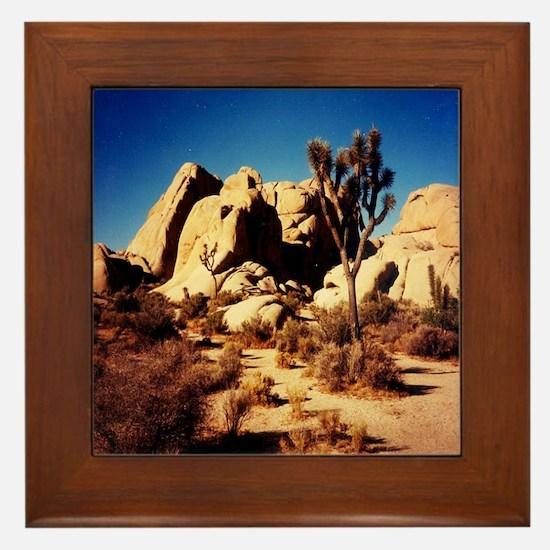 Joshua Tree National Park Framed Tile