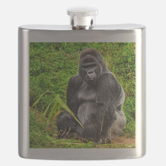An HDR image of a male silver back gorilla s Flask