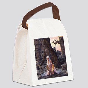 dl_shower_curtain Canvas Lunch Bag