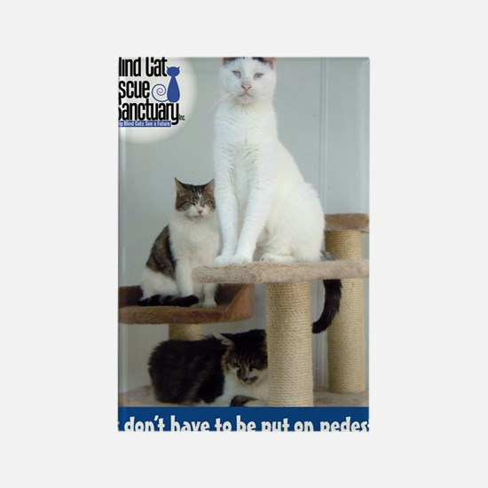 Cats on Pedestals Rectangle Magnet