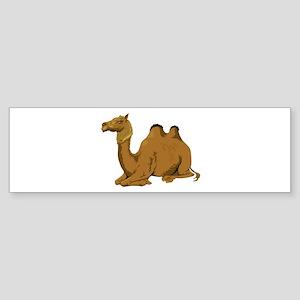 RELAX NOW Bumper Sticker