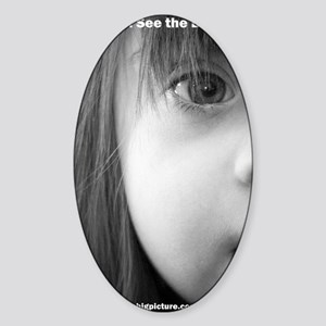 DS the BIG Picture Sticker (Oval)