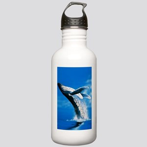 Humpback whale Stainless Water Bottle 1.0L
