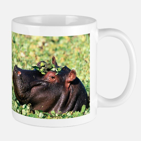 Hippo Casanova Hippopotamus Coffee Mug