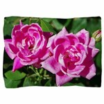 Two Pink Roses Pillow Sham