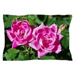 Two Pink Roses Pillow Case