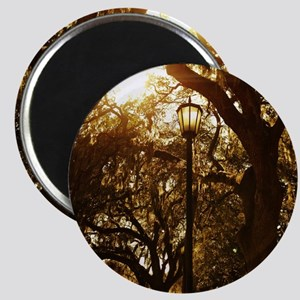 Trees and street light Magnet