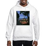 Natures Window - Grand Canyon Hooded Sweatshirt