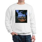 Natures Window - Grand Canyon Sweatshirt