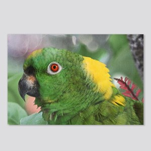Yellow Nape Amazon Parrot Postcards (Package of 8)