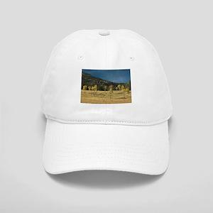 Aspen Family of Yellowstone Cap