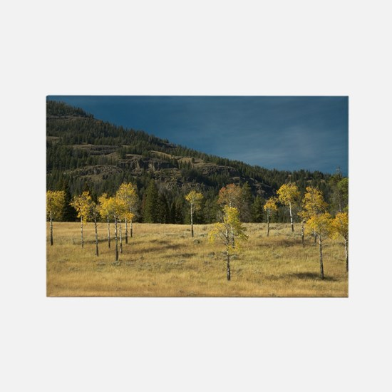 Aspen Family of Yellowstone Rectangle Magnet