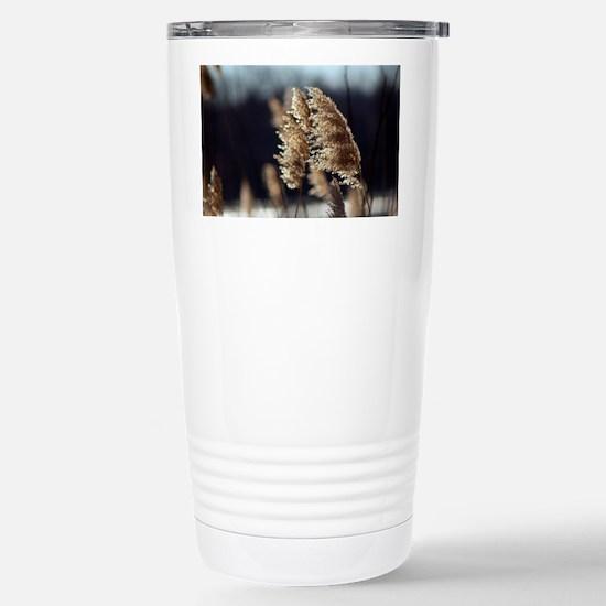 Phragmites Stainless Steel Travel Mug