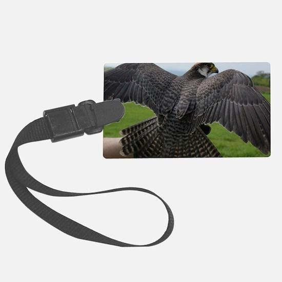 Peregrine Falcon Luggage Tag