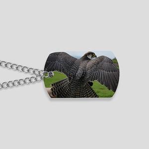 Peregrine Falcon Dog Tags