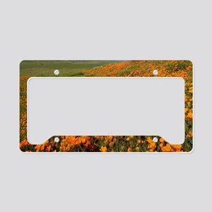 Field of Poppies License Plate Holder