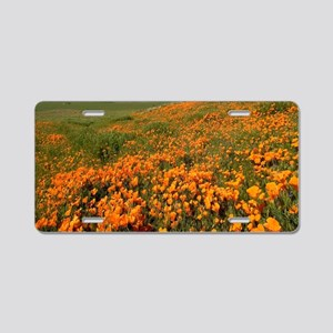 Field of Poppies Aluminum License Plate