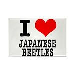 I Heart (Love) Japanese Beetles Rectangle Magnet (