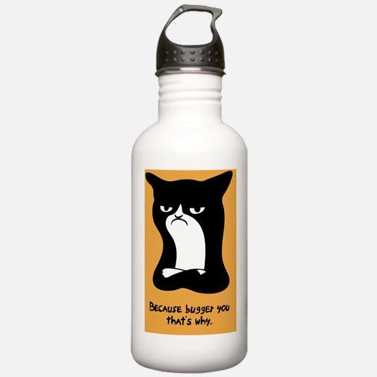 angry-cat2-LG Water Bottle