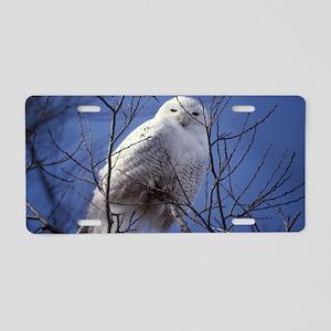 Snowy White Owl Aluminum License Plate