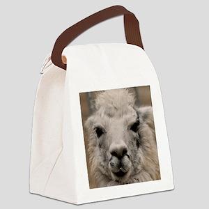 (15) Llama 8716 Canvas Lunch Bag