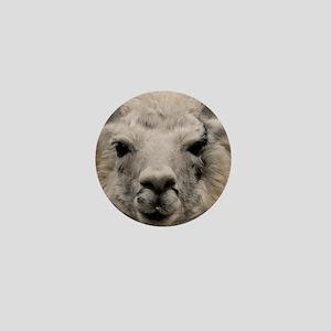 (15) Llama 8716 Mini Button