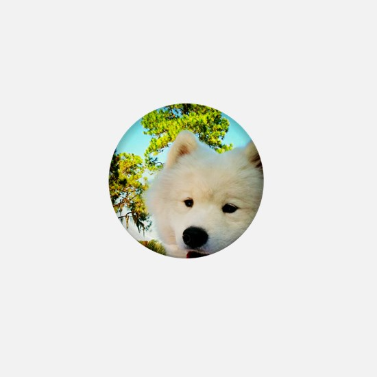 Chi Samoyed Mini Button