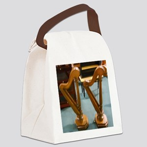 Doll House Harps Canvas Lunch Bag