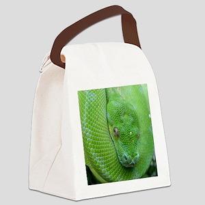 Tree python/chondro python Canvas Lunch Bag