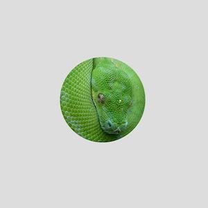 Tree python/chondro python Mini Button