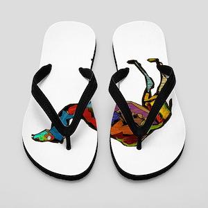 CAMEL SPECTRAL Flip Flops