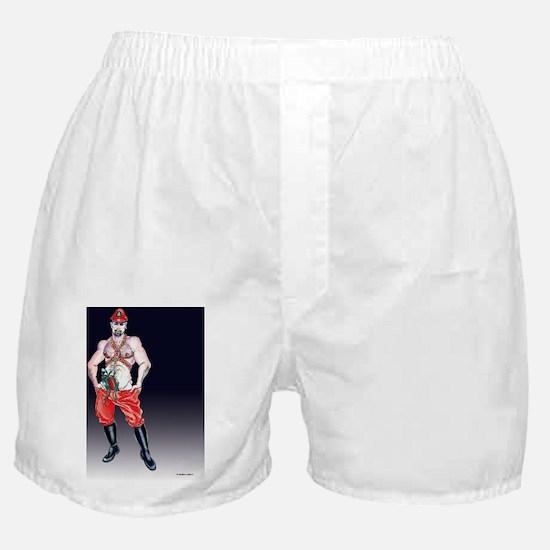 Sexy Santa Boxer Shorts