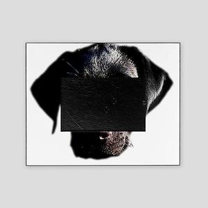 Black Lab Picture Frame
