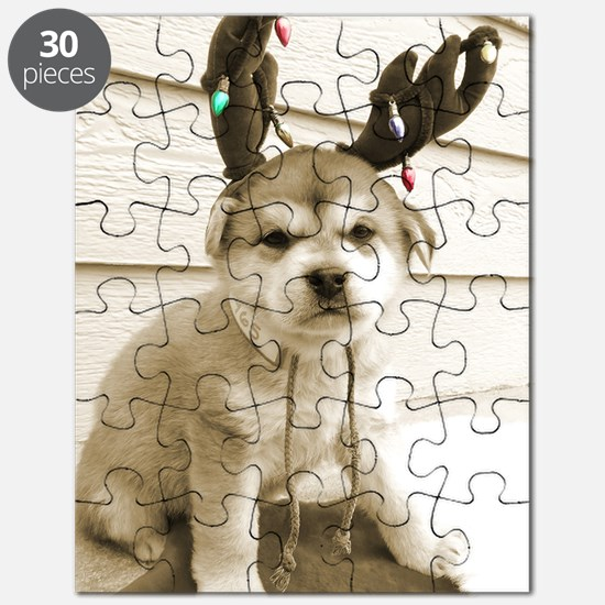 Chester oval 2.5 x 3.5 Puzzle