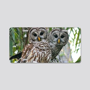Barred Owl Pair Aluminum License Plate