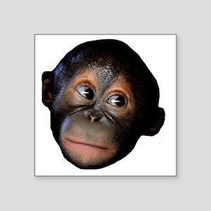 "Orangutan Square Sticker 3"" x 3"""