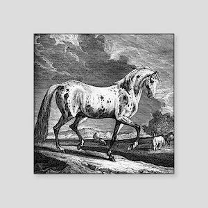 """Spotted Vienna Stallion Square Sticker 3"""" x 3"""""""
