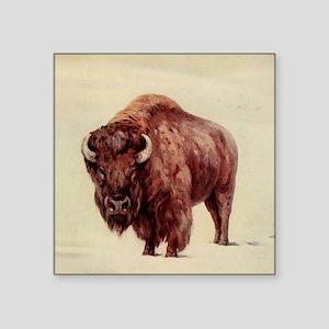 "Buffalo Square Sticker 3"" x 3"""
